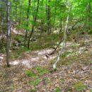 cliff-penhasco1